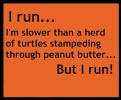 stampeding turtles