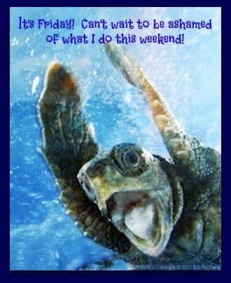 turtle friday