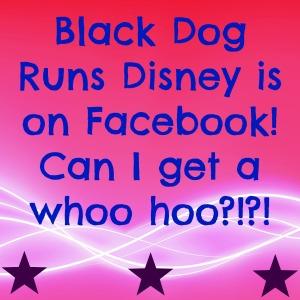 BDRD FB