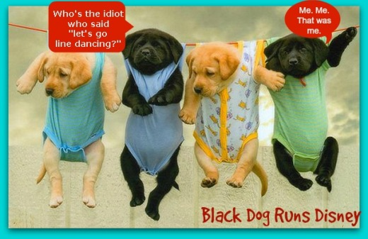 WMW line pups