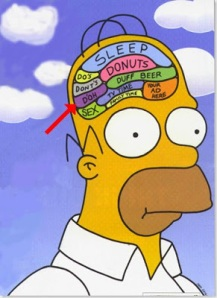 Brain homer_simpson