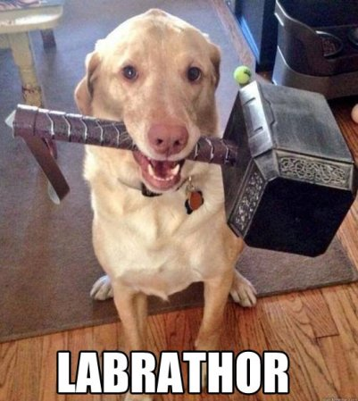 Labrathor