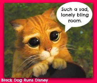 sad cat2