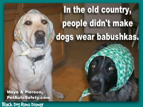 WMW dogs-babushkas2
