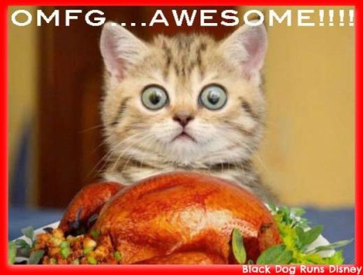 FF Turkey Cat1