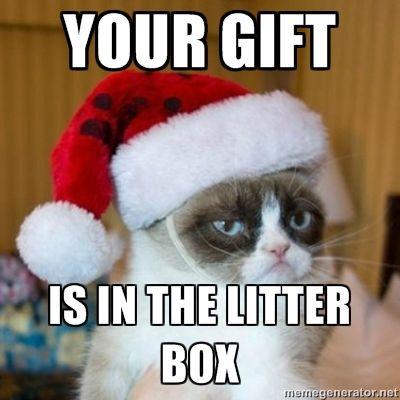 FF Grumpy Cat Christmas