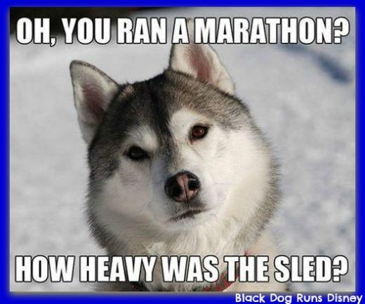 Marathon Husky1