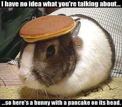 FF bunny pancake