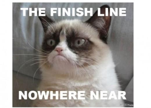 Grump Cat Finish Line