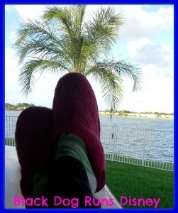 island slippers1