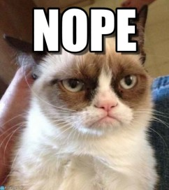 nope grumpy cat