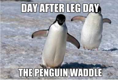 leg day waddle