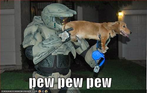 WMW Gun dog