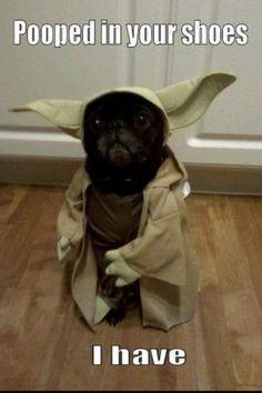 WMW Yoda