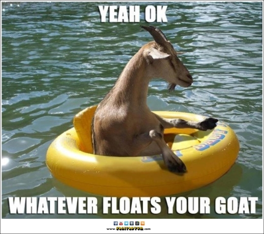 FF Goat