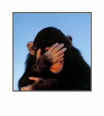 chagrined_chimp